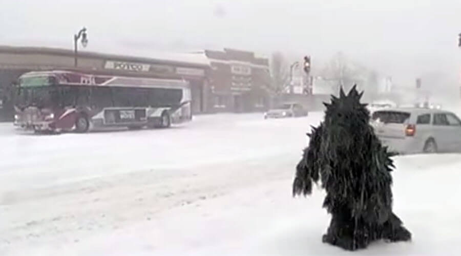 Pot Sasquatch Interrupts Weather Report During