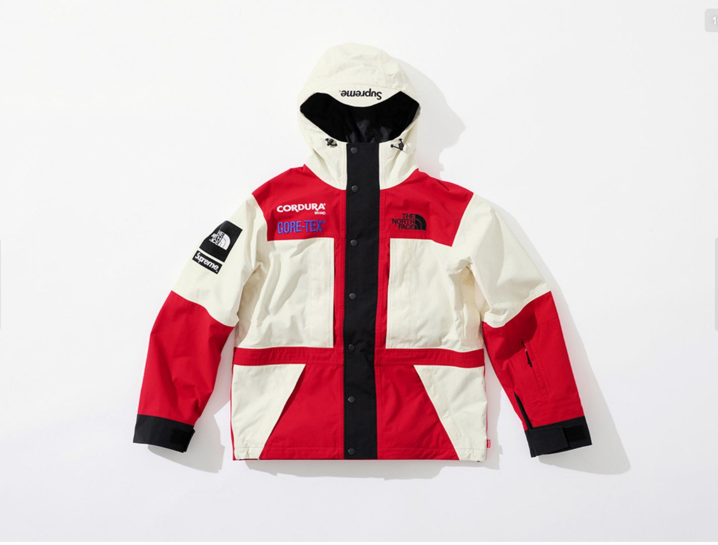 Supreme And North Face Drop GORE- 10