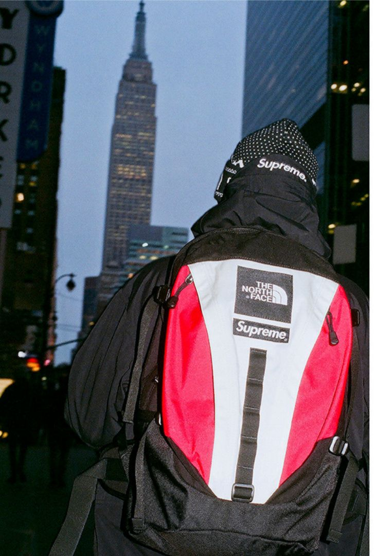 Supreme And North Face Drop GORE- 3