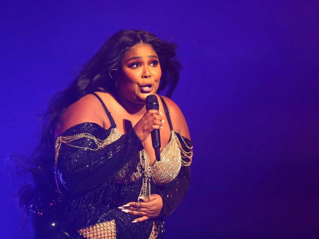 Lizzo Gets Trolled Off of Twitter