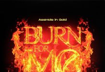 Recent_News_on_New_Song_Burn_For_Me_Hypefresh