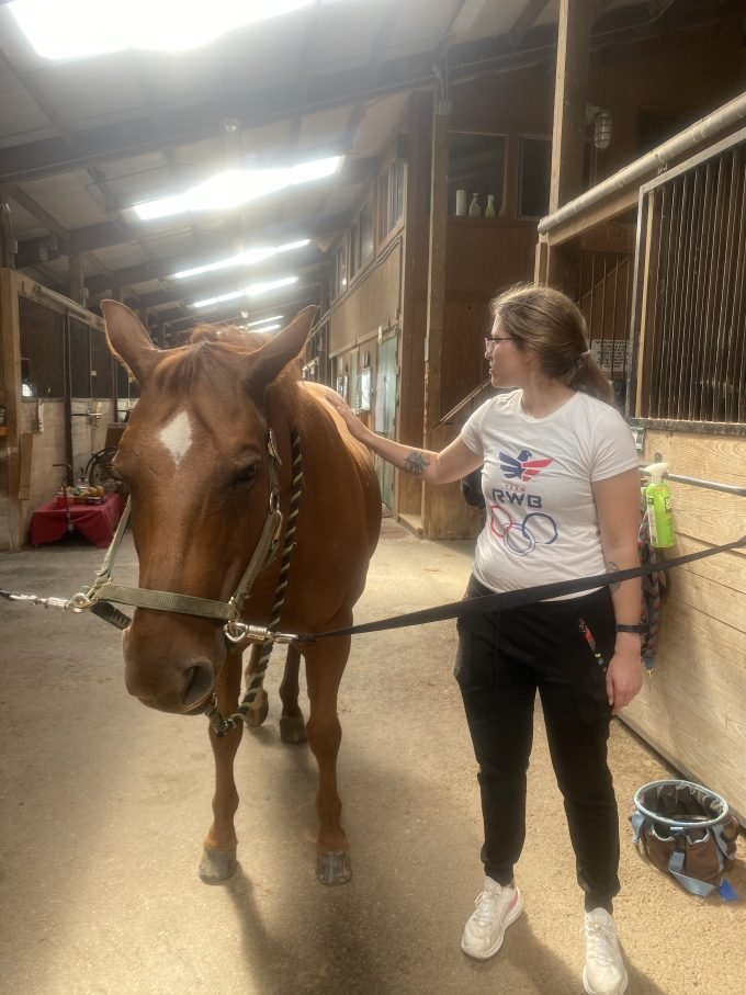 Equine Therapy: A New Hope For Mental Health Treatment